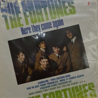 The Fortunes  -  Here They Came Again