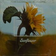 Frank Chacksfield And His Orchestra  -  Sunflower