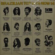 Various Artists  -  Brazilian Top Hits Now 14