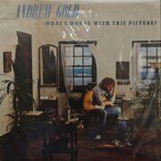 Andrew Gold  -  What's Wrong With This Pictures?